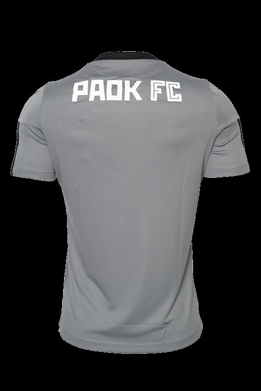 T-shirt  ΠΑΟΚ Προπόνησης Γκρι Παραλλαγή Παιδικό 19-20 009861